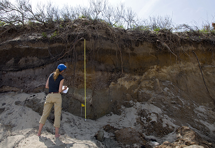 Cape Cod sediments