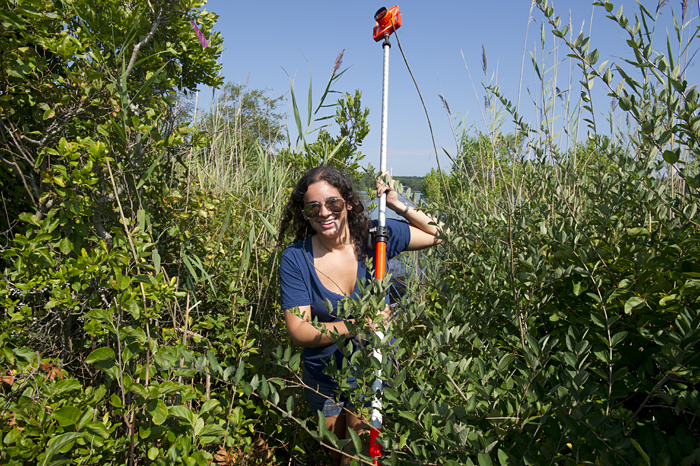 SSF Leah Fine in the weeds