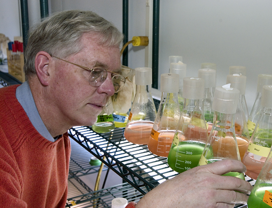 Dr. John Waterbury looking at phytoplankton samples in his lab.