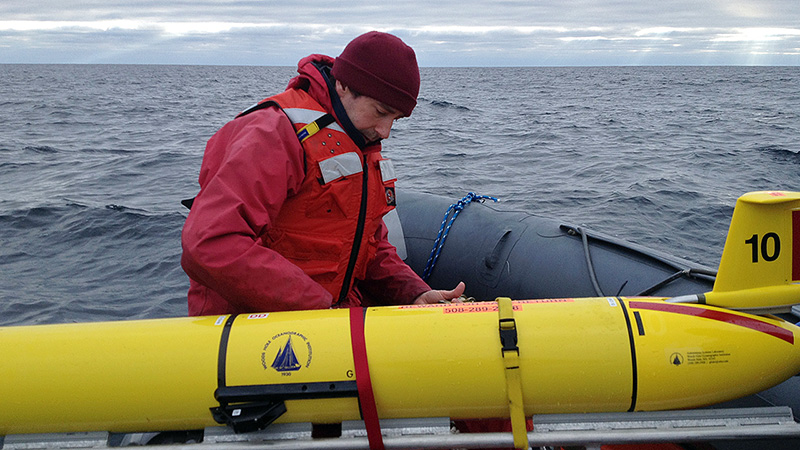 Right whale monitoring
