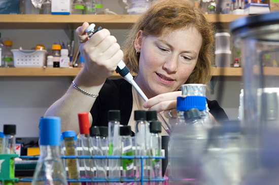 Biogeochemist Karen Casciotti