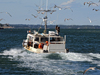 Fishing boat leaves Chatham Harbor