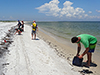 Beachcombing for Deepwater Horizon