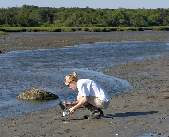 Joint Program graduate Carly Strasser collects samples.