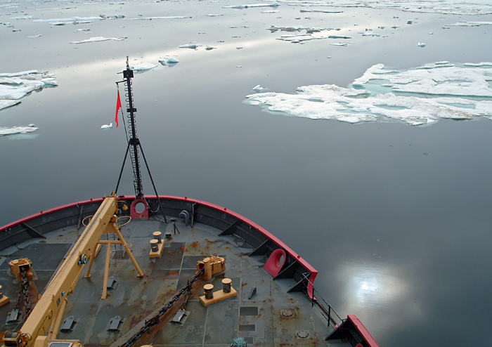 Healy through sea ice