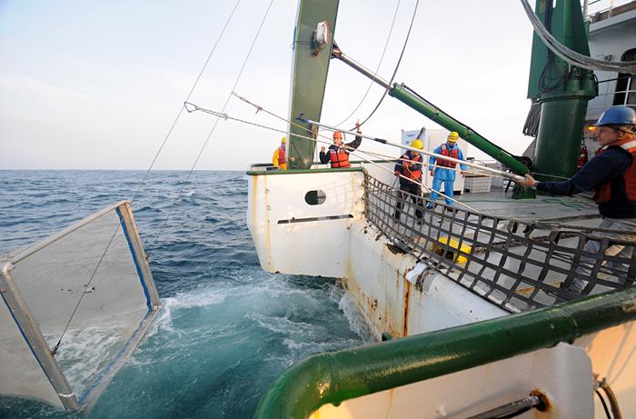 Net tow off Fukushima