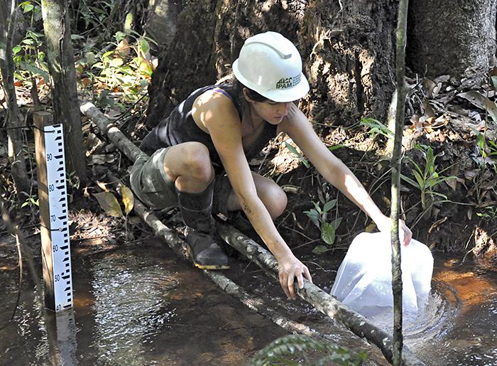 Amazon basin sampling