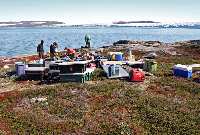 Making camp in Greenland