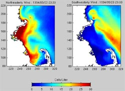two models show how red tide might move