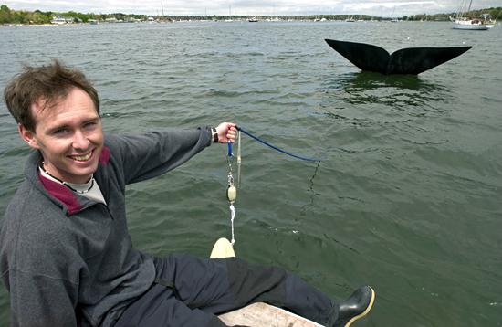 Jeremy Winn harnessing the replica whale tail