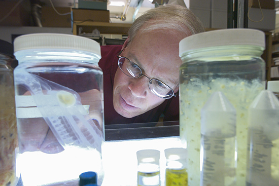 Larry Madin in his lab.
