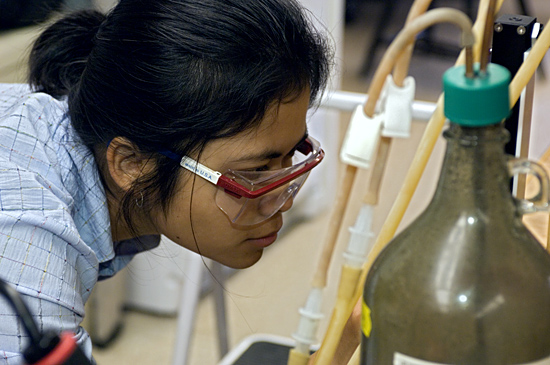 Ratsirin (Prea) Supcharoen, Summer Student Fellow in Matt Charette's laboratory