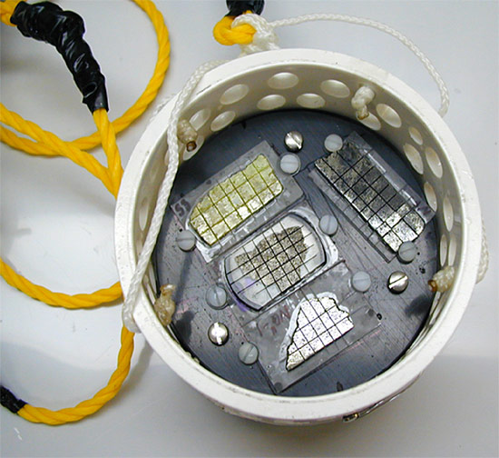 WHOI scientists prepared plastic buckets filled with thin, microbe-free samples of natural seafloor rock and placed them back on the seafloor.