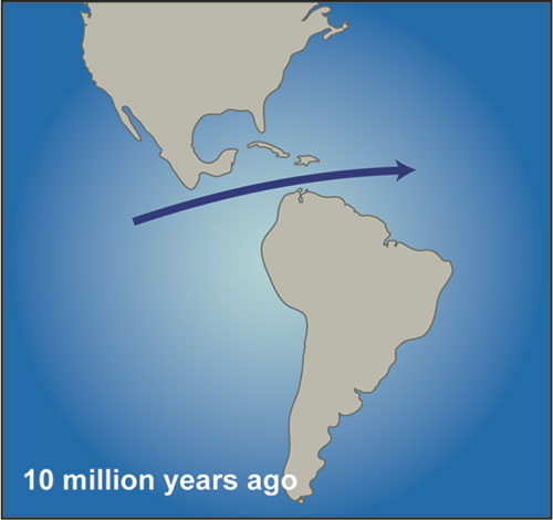 North and South America approach each other. Water flows from the Pacific to the Atlantic via the Central American Seaway (image linked from Woods Hole Oceanus Magazine, April 2004)