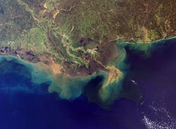satellite image shows the flood of sediment pouring out of the Mississippi River into the Gulf of Mexico