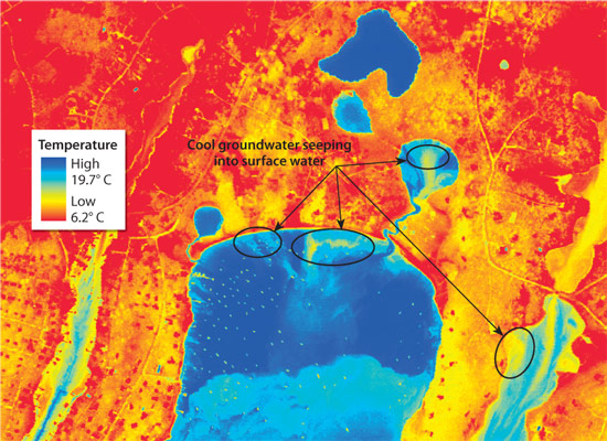 Infrared images shot by airplane in September 2002 reveal the extent of groundwater seeping into Waquoit Bay, Mass.