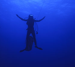 A scuba diver in the open water is immersed in clear, pure blue light. Water strongly absorbs red, orange, and yellow light, while blue light penetrates into the depths.