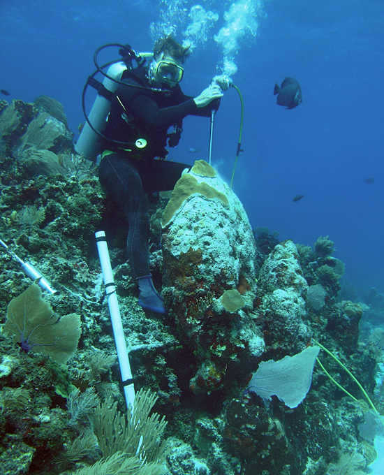 Konrad Hughen drilling coral.