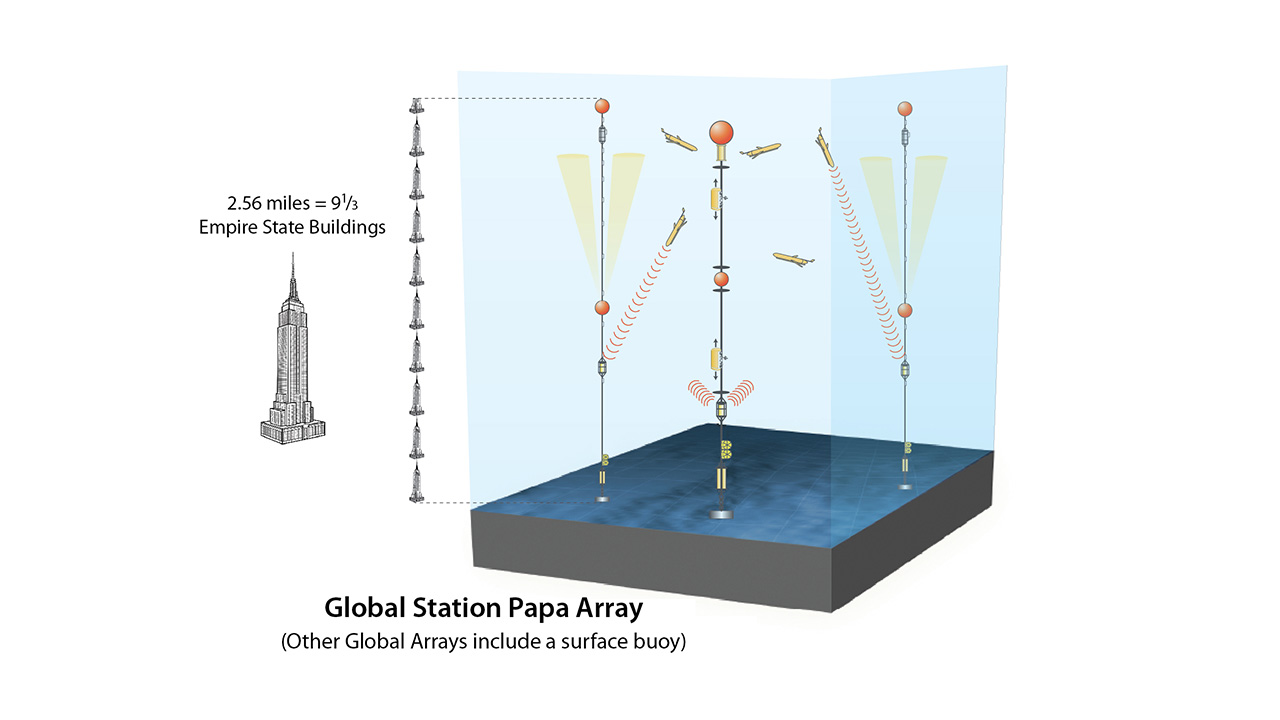 Global array