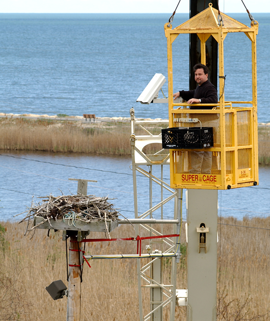 Spring 2002, Multimedia Coordinator Matthew Barton installing the WHOI osprey camera
