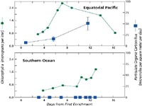 Iron fertilization graph