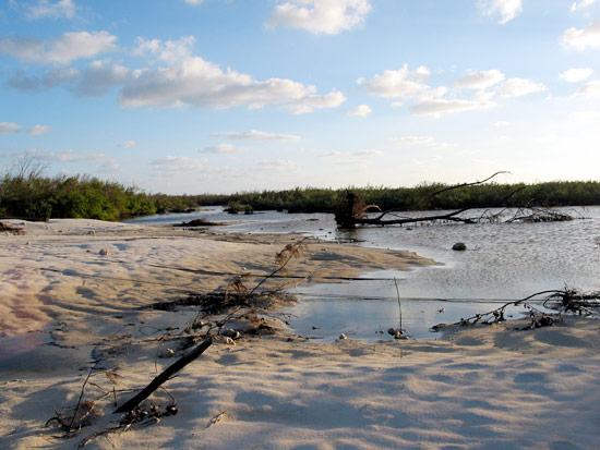 Overwash deposit on Grand Cayman from Hurricane Ivan.