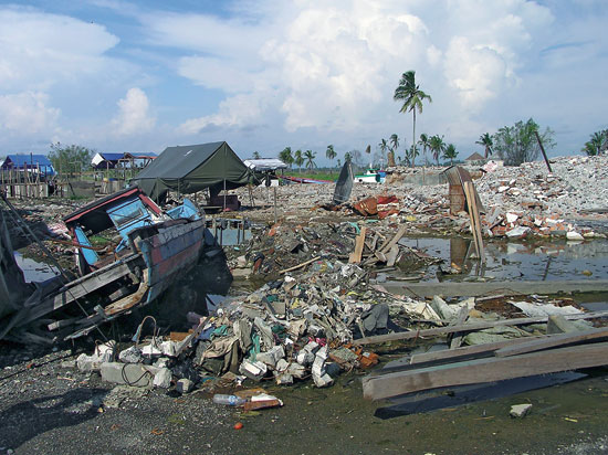 Lessons from the 2004 Indian Ocean Tsunami Topic of Public ...