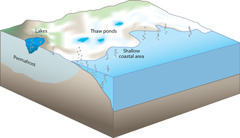 Arctic Methane Sources