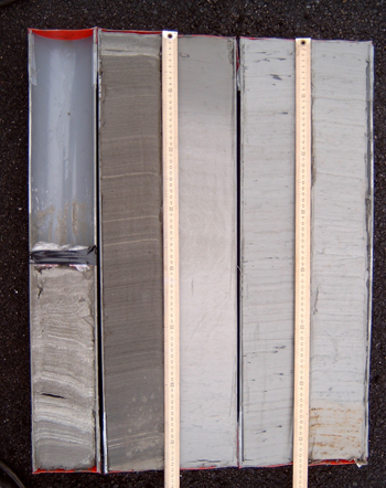 split core sample
