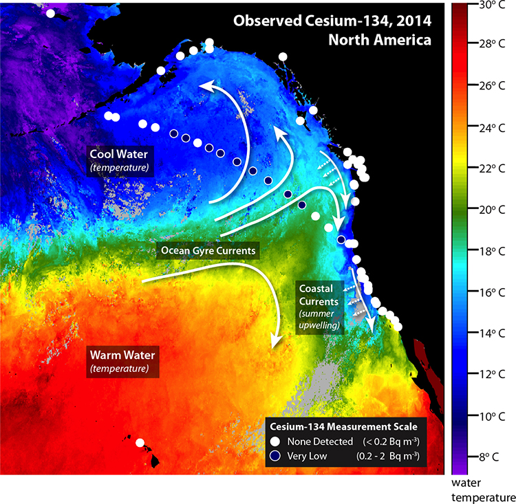 Fukushima Radioactivity Detected Off West Coast Woods Hole - Radiation map in us