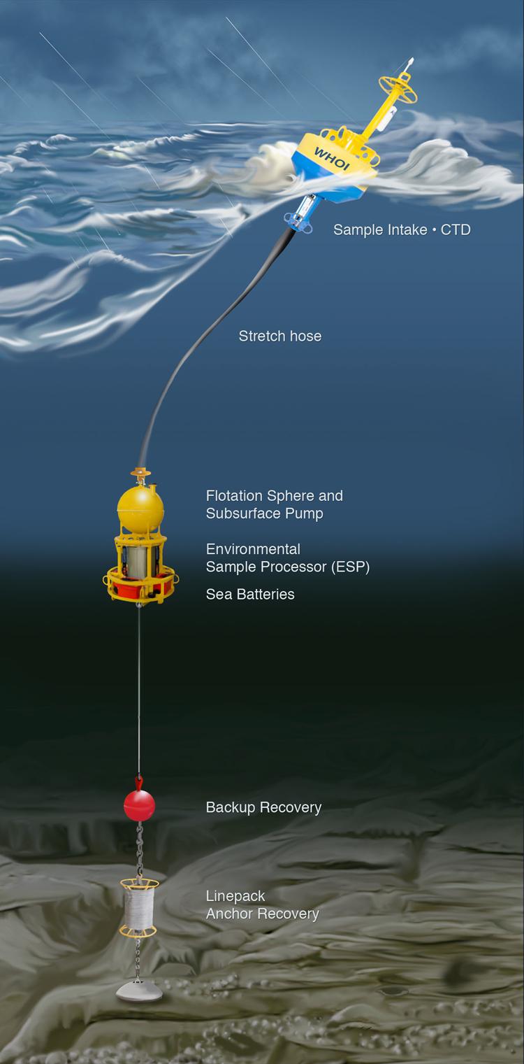 illustration of mooring