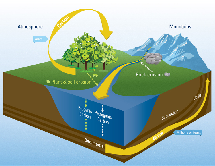 Study Reveals How Rivers Regulate Global Carbon Cycle : Woods Hole ...