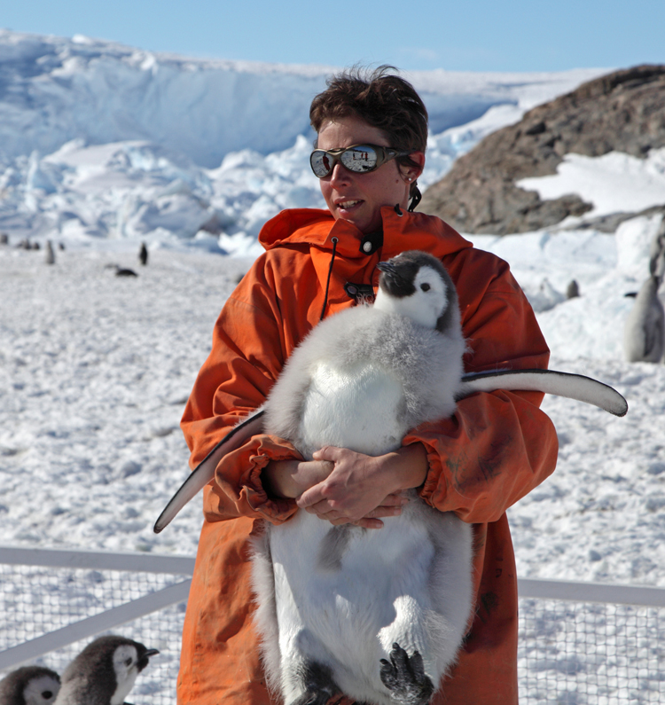 Jenouvrier with young penguin