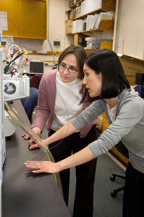 Liz Kujawinski, standing, and colleague Melissa Kido Soule work on oil dispersant study in Kujawinski's lab.