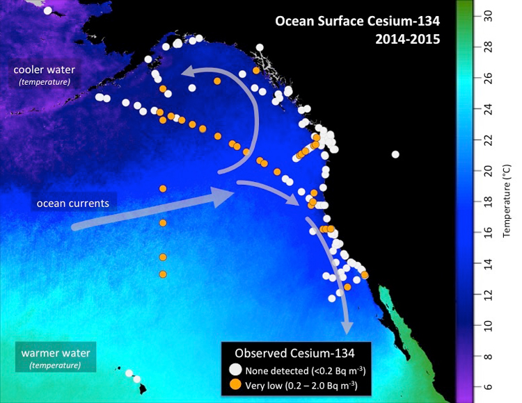 Higher Levels Of Fukushima Cesium Detected Offshore Woods Hole - Map of us ocean currents