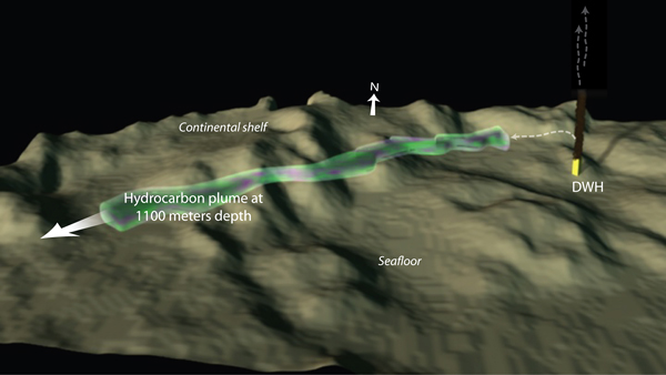 This illustration shows a plume of hydrocarbons emanating from the Deepwater Horizon oil spill. The plume was identified using the autonomous underwater vehicle (AUV) Sentry, instrumented with a TETHYS mass spectrometer. The vehicle made numerous criss-cross penetrations to map the parameters of the 1,100-meter-deep plume. Woods Hole Oceanographic Institution (WHOI) scientists, who conducted the NSF-funded work in June 2010, report the plume they measured was 1.2 miles wide and 650 feet high. WHOI developed and operates Sentry.