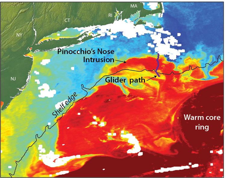 Gulf Stream Ring Water Intrudes Onto Continental Shelf