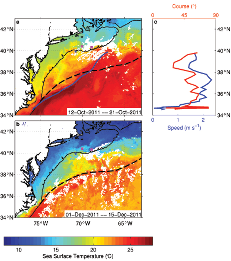 sea surface temperature maps