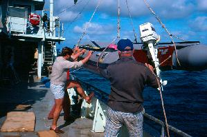 Oceanus Crewmen John Boothilette and Bosun Whitey Warecki Deploying Zodiac Dive Boat