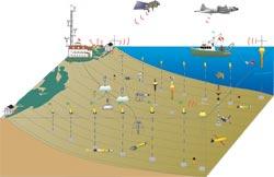 schematic of LEO instruments on the seafloor