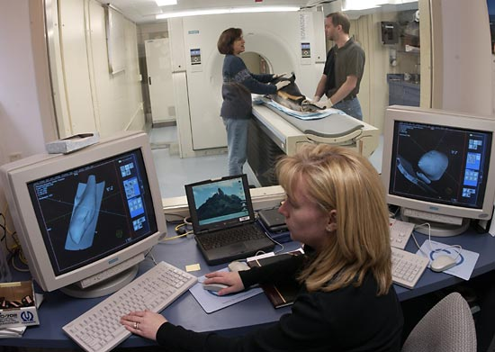 Postdoctoral Investigator Soraya Moein Bartol and Senior Research Assistant Scott Cramer position an Atlantic white-sided dolphin, which stranded and died, on the WHOI CT scanner bed before imaging, while CT technologist Julie Arruda (front) examines previously generated images.