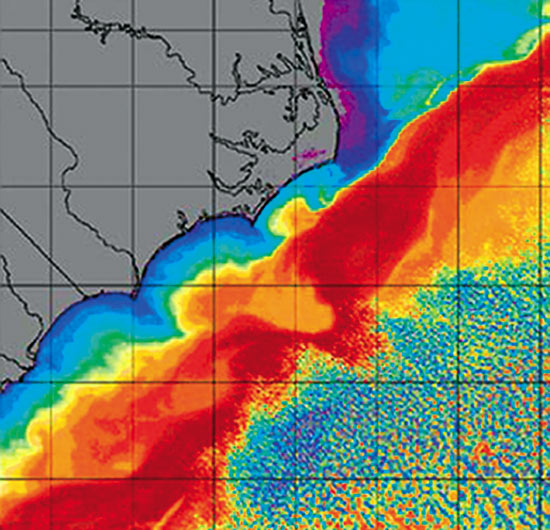 warm, salty Gulf Stream (red, orange, and yellow in map above) collides with a cold, fresh, southerly coastal current (dark blue).