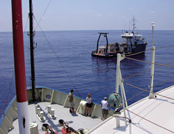 The WHOI-operated Oceanus and BBSR-operated Weatherbird II worked in tandem for two summers, tracking different aspects of eddy dynamics. The ships met at sea several times during the two-year operation.