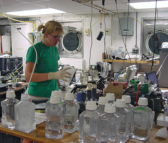 Sarah Bender, a Rutgers University researcher, processes water samples in the laboratory