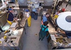 marine mammal laboratory at Woods Hole Oceanographic Institution