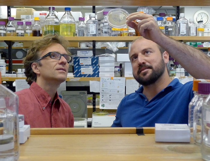 Martin Polz and Otto Cordero of MIT