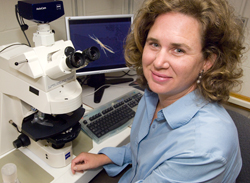 Photo of Sonya Dyhrman at her microscope