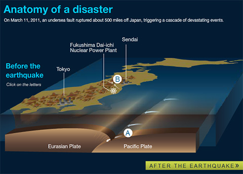 Anatomy of a Disaster