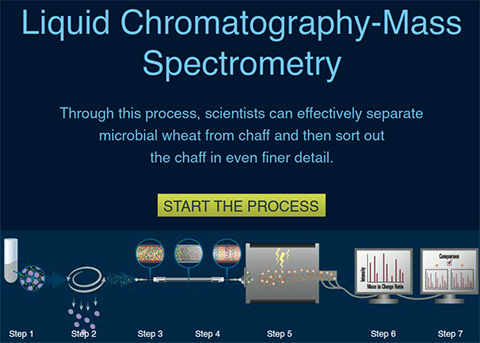 Liquid Chromatography-Mass Spectrometry