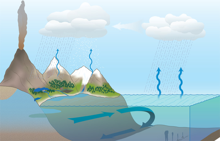 Explore the Water Cycle